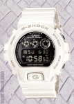 G-Shock DW6900NB-7