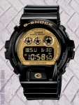 G-Shock DW6900GB-1