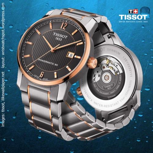 t087_407_55_067_00_swiss watch gold silver